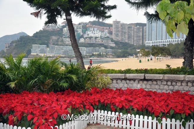 Hong Kong Malcolm Stephens Photography
